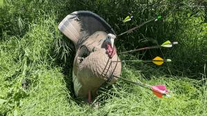 3D Round Turkey