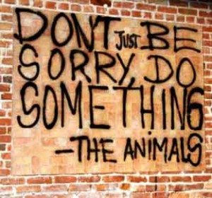 animal-cruelty-dont-be-sorry-do-something