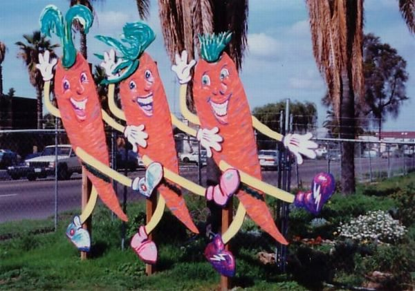 City Heights Community Garden, Dancing Carrots