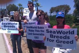 seaworld greed