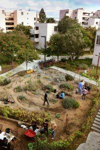 Earl's Garden UCSD Photo: Erika Johnson