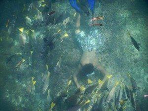 St Agustin Reef, Oaxaca