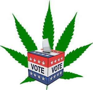 ballot box over marijuana