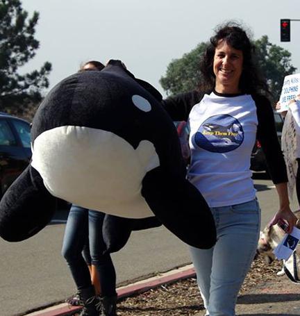 Orca advocate no. 9