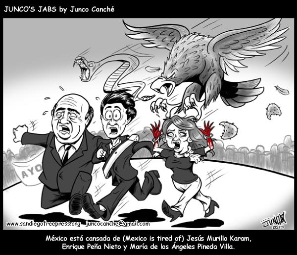 juncocanche27