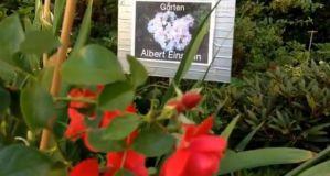 Geo-Poetic Spaces: Einstein's Garden