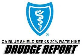 Blue sheild