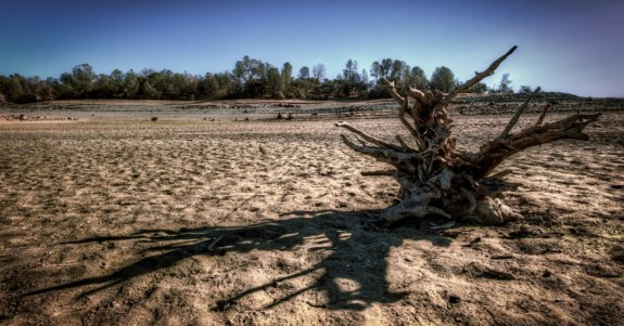 A dried up area of the Folsom Lake reservoir in northern California. (Photo: Mr.Morgan.Murphy/cc/flickr)
