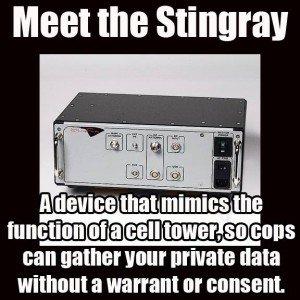 stingray-meme-300x300