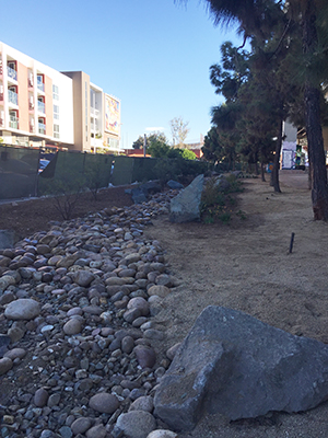 A $42,000 grant from National Fish and Wildlife Foundation helped tear out concrete/asphalt and add landscaping.