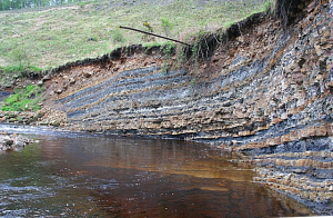 Human Activity Ushers in New Geologic Epoch
