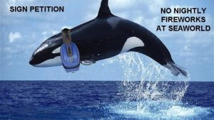 SeaWorld is Guilty of Disturbing the Peace