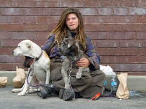 homeless with pets