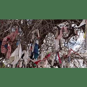 Geo-Poetic Spaces: The Wishing Tree