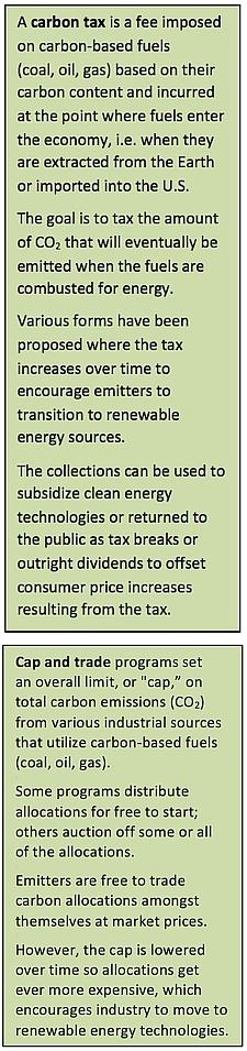 """Sidebar describing """"Carbon tax"""" and """"Cap and trade"""""""