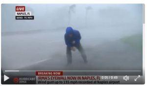 Hurricane Irma: Bringing Out the Stupid in Florida