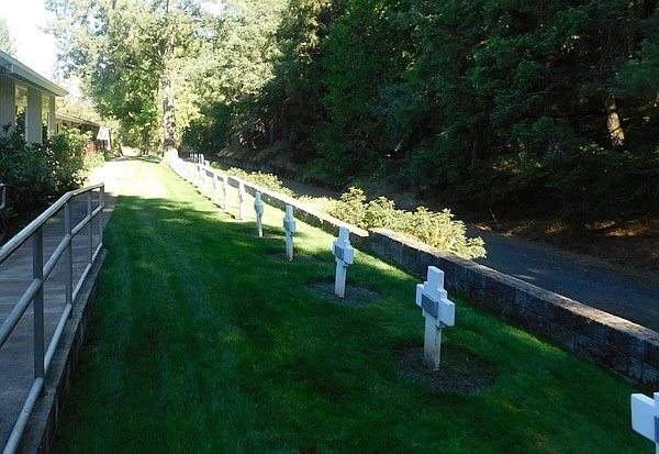Small grassy stretch with wooden grave crosses