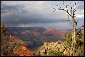 Overcoming Gloom In a Grand Canyon State of Mind
