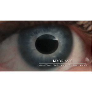 Close-up of human eye with blue iris