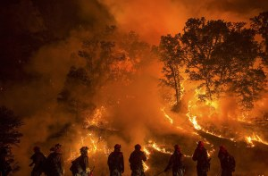 Prisoners Risk Their Lives Fighting California Wildfires for $2 a Day