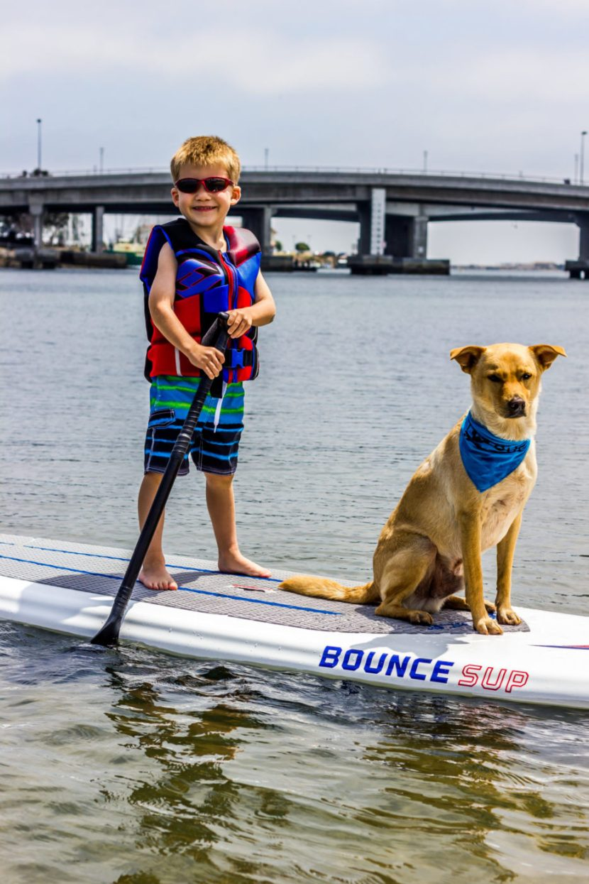 Best Paddleboards for Rental Operators