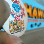 Hawai Waterpark Malang sandi iswahyudi