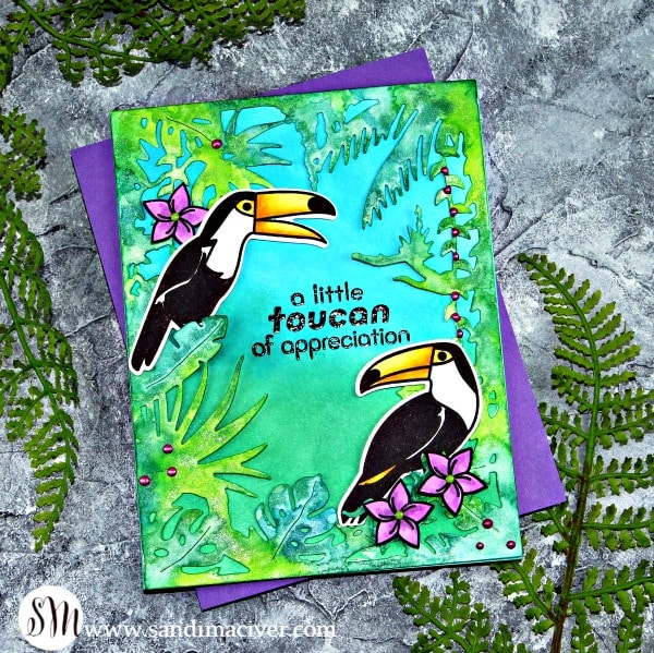 Hero Arts Hello Toucan Easy Two Layer watercolor and distress oxide ink card