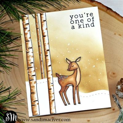 New Video – Copic Quickies with Woodland Whimsy