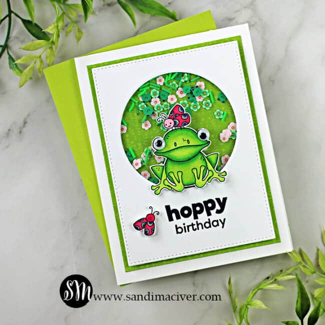 hand made shaker card with a frog and ladybugs on it