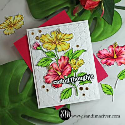 Simon Says Stamp Hibiscus Blooms