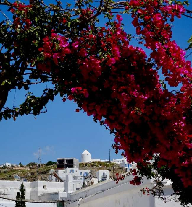 Landscape Mykonos, Greek photo tour