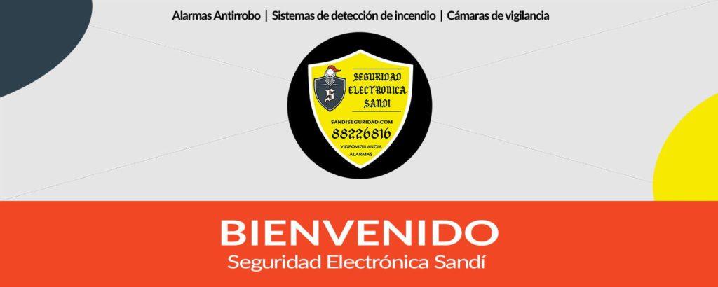 Seguridad Electrónica Sandí