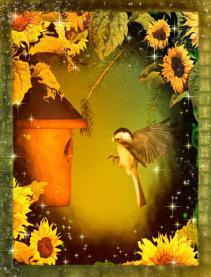 BirdhouseA
