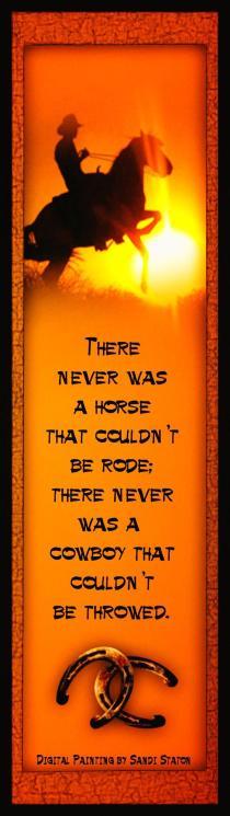 CowboyHorseHorseshoes