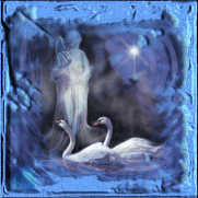 Swans And Angel