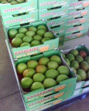 Katherine Mangoes ready to be transported to market