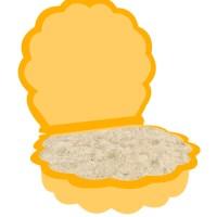 Sandkastenmuschel