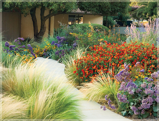 Lovely Sandoval County Master Gardeners Are Dedicated In Helping Our Community  With Gardening Knowledge And Assistance On Community Service Projects.