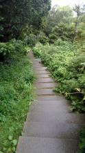 botanische tuin 1