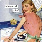 housework rules