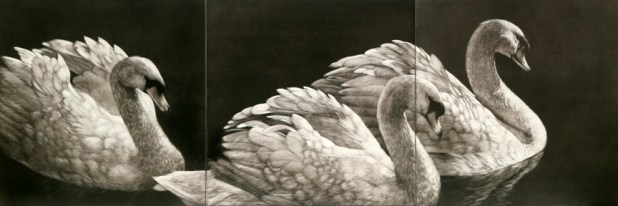 © Paula Waterman, Dreamboats, 12x36 scratchboard
