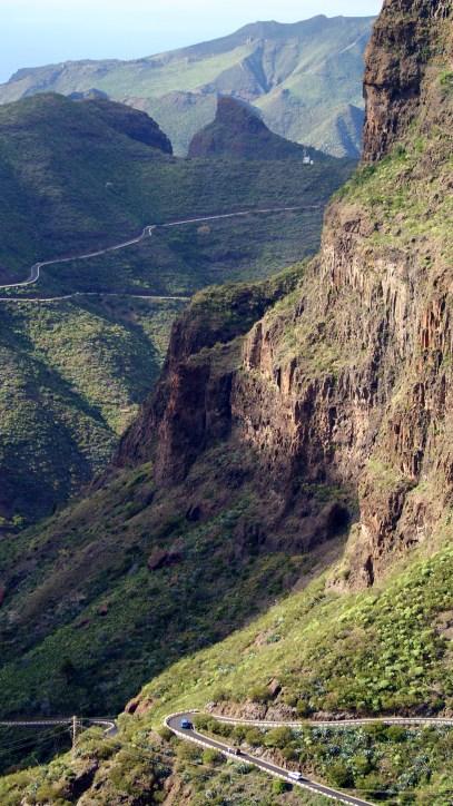 hoge rots