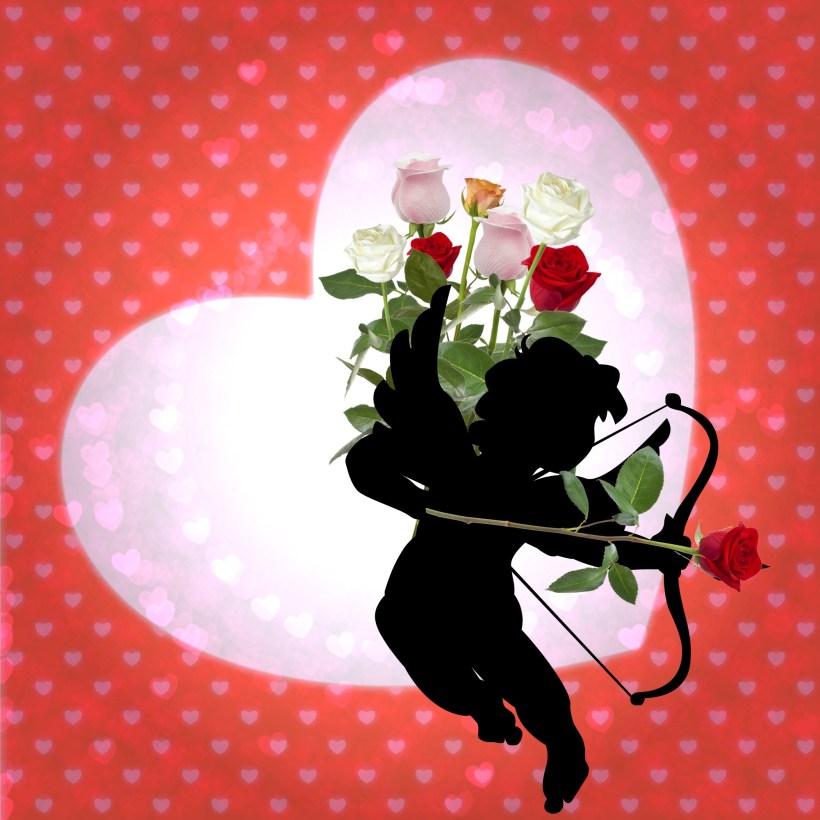 cupid-roses