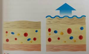Tape lift huid, stimuleert bloed lymfe circulatie