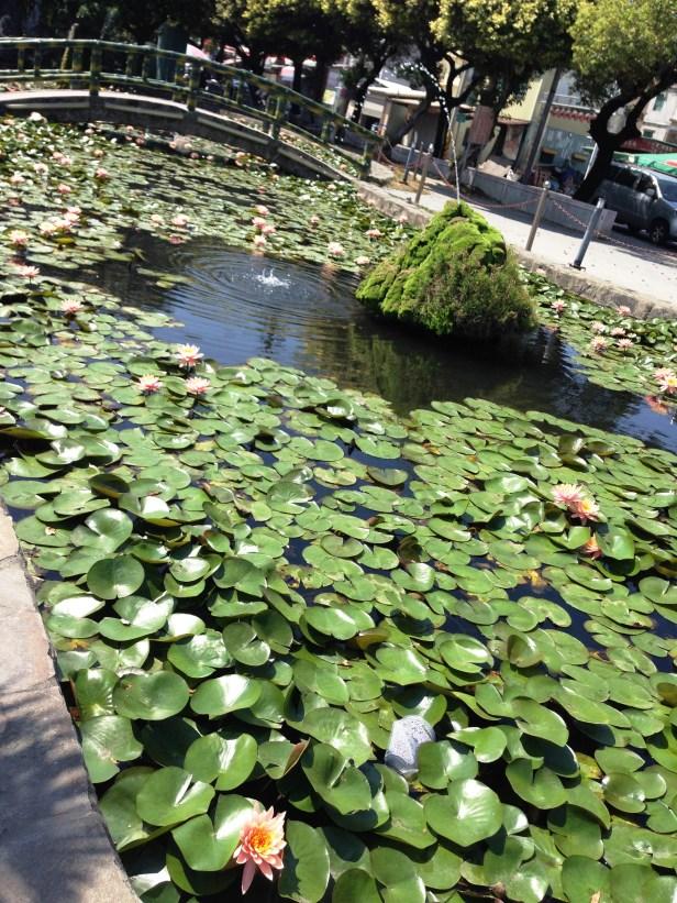 Dragon and Tiger Pavillon am Lotus See