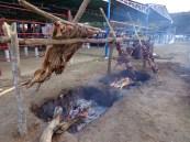 Carne en vara (8)