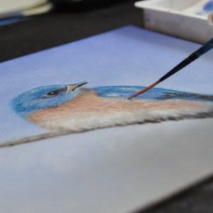 blue bird painting, Artistic confidence,  artistic motivation, how to remove artist blocks, Pet portraits, feng shui art for the livingroom, feng shui art, n artist, local artist, master artist, female artist, bird art, nature art, modern art, expressionistic art, white art, teaching artist, conservation artist