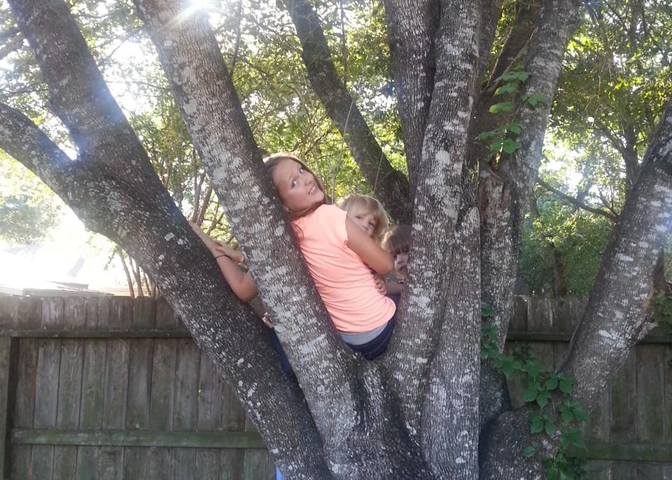 l-tree