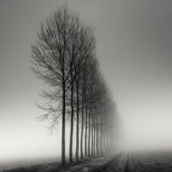 Pierre-Pellegrini-part3-3