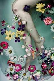 les-fleurs-klein